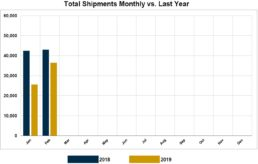 Graph of RVIA's report on monthly wholesale shipments through February of 2019.