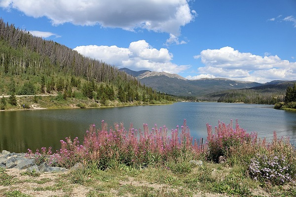 Photo of State Forest State Park in Colorado.