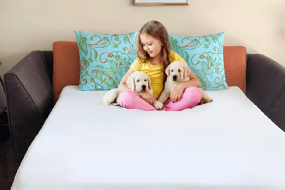 A picture of a little girl sitting on a convertible sofa bed holding two yellow lab puppies.