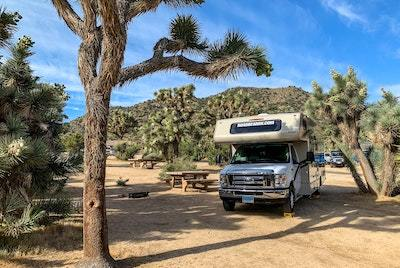 A photo of a type C motorhome at a desert campground. The motorhome is parked by a spiny tree. The sky is a slightly cloudy blue.