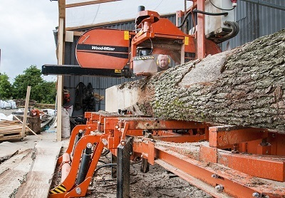 A stock picture of a man working at a lumber mill, putting lumber through a large saw.