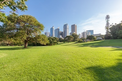A picture of a public park with city in the background