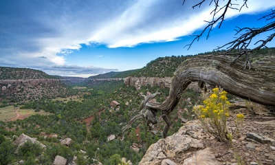 A picture of the landscape at the Sabinoso Wilderness in New Mexico